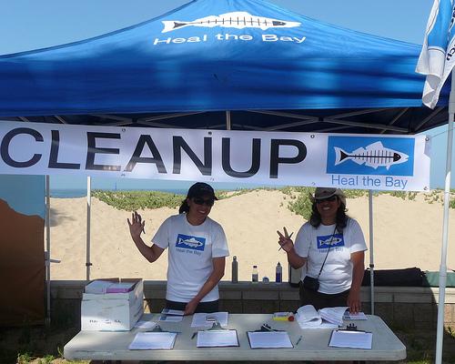 37th Annual Avalon, Catalina Underwater Cleanup @ Catalina Island, CA-  Avalon Harbor | California | United States