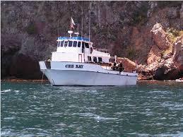 Dive Boat- Cee Ray, Destination- Catalina Island, CA @ Cee Ray Dive Boat   Long Beach   California   United States